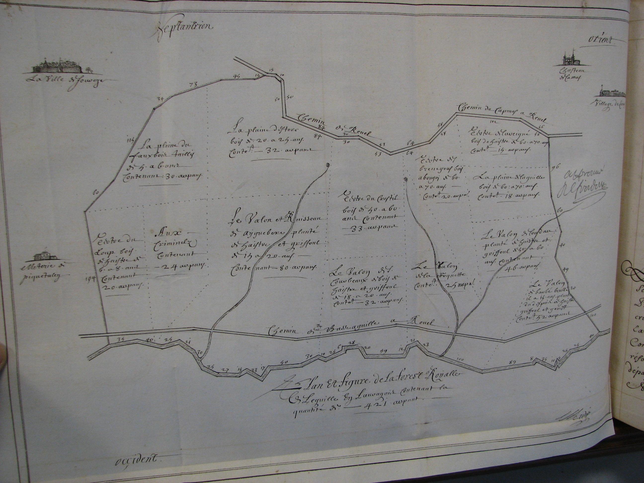 Plan 1 : Plan et figure de la forest royalle de Leguille en Lauragois contenant la quantité de 421 arpents, Archives départementales de la Haute-Garonne, 8 B 006, f°134 v.